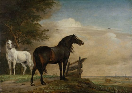 Potter, Paulus: Two Horses in a Meadow Near a Gate. Fine Art Print/Poster. Sizes: A4/A3/A2/A1 (004028)